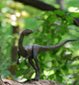 thumb_small_compsognathus.jpg