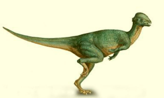 Dinosaurs Climate Change and Biodiversity