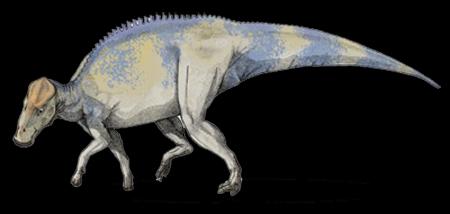 brachylophosaurus - photo #11