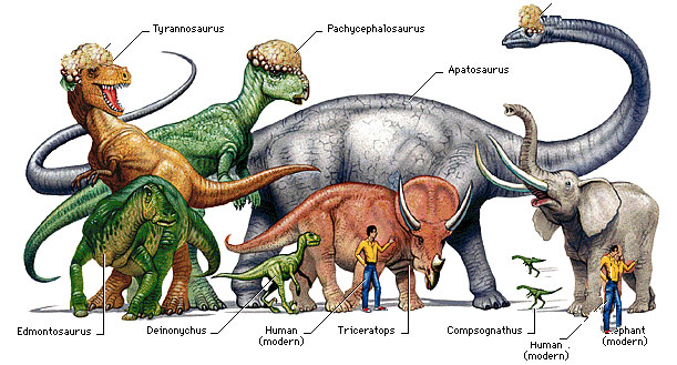 Dinosaurs types species facts