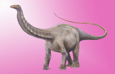 Apatosaurus dinosaur- facts, pictures, habitat, fossils, behavior ...