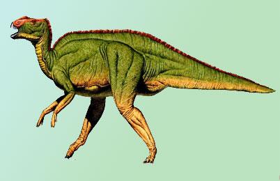 http://www.rareresource.com/images/hadrosaurus.jpg