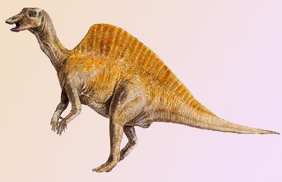 ouranosaurus.jpg