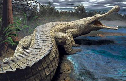 Sarcosuchus Dinosaur History Facts Dinosaur Encyclopedia