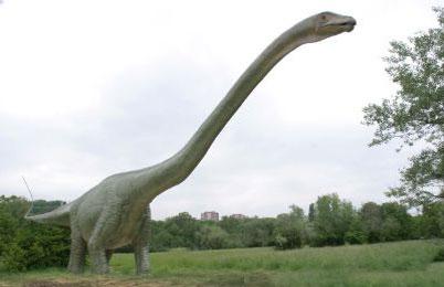 Seismosaurus Dinosaur, facts - Jurassic park dinosaur