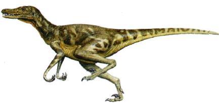 velociraptor collection citations pastebincom