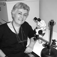 Susan E. Evans