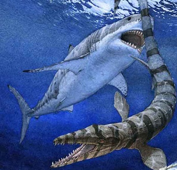 What i needed a baby megalodon time picture.  Whatever is no real megalodons.  Art... anoop sidhu.