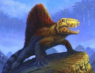 [Image: Dimetrodon5.jpg]