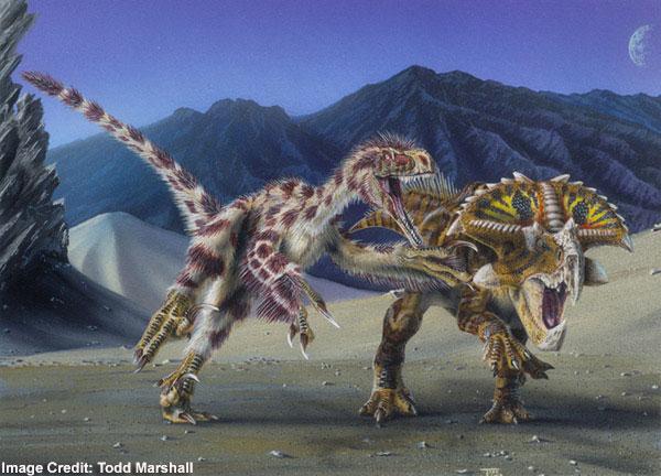 How Did Velociraptors Eat Their Food