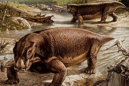 11 Fakta Unik dan Menarik Tentang Dinosaurus Part 2