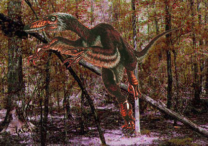 velociraptors fact and fiction Ghosts can be very scary—if you need recent evidence of this rather obvious fact, set aside several sleepless nights so you can watch  io9 decided to go back to the alt-'90s witchy.